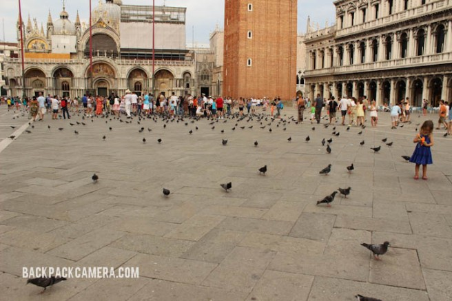 Surround yourself with pigeons at Piazza San Marco